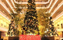 Нова Година 2019 в Кушадасъ - AMARA SEALIGHT ELITE 5* (4 нощувки)